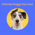 Charney Doggy Day Care